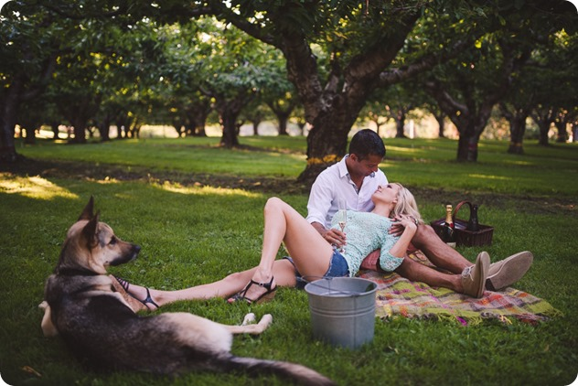 Kelowna-wedding-photographer_Cherry-orchard-engagement_dog-sunset-champagne_193513_by-Kevin-Trowbridge