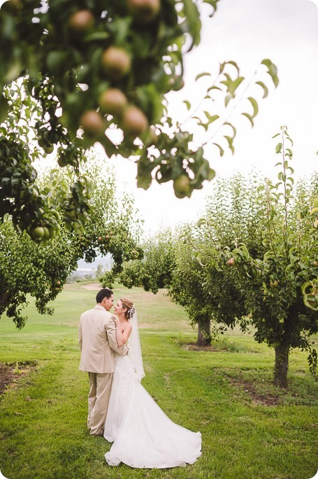 Harvest-Golf-Club-wedding_orchard-classic-car_Kelowna-photographer__170521_by-Kevin-Trowbridge