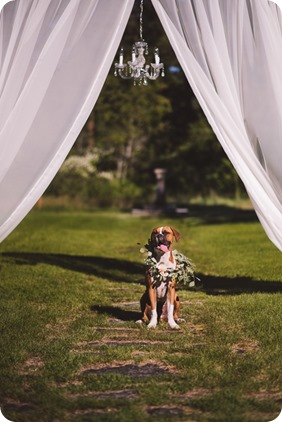 Fintry-Estate-wedding_manor-park-lakeside__by-Kevin-Trowbridge-photography_Okanagan-12