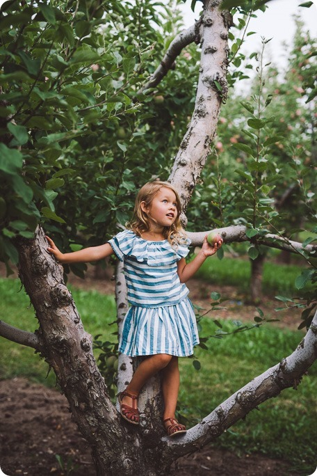 Kelowna-family-portraits_apple-orchard-rustic_Okanagan-photographer__by-Kevin-Trowbridge-photography_Kelowna_183632