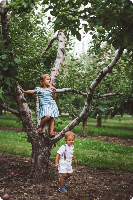 Kelowna-family-portraits_apple-orchard-rustic_Okanagan-photographer__by-Kevin-Trowbridge-photography_Kelowna_183704